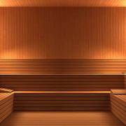 Belinka Interier Sauna4